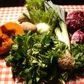 Festival alimenterre et musquée de provence.....