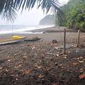 La plage de Turtle Beach et le bateau qui nous y amenes