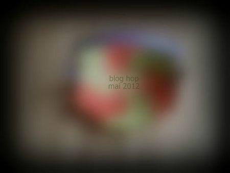 blog hop 05 2012