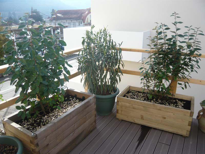 100 barbecue fixe brico depot ezkrima papier peint couleur taupe ezkri - Plante balcon pour cacher vis vis ...