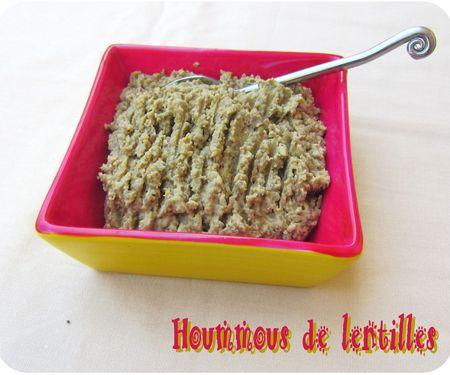 hoummous de lentilles (scrap1)