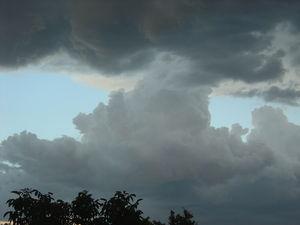 octobre_2009_011