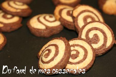 biscuit bi-colore
