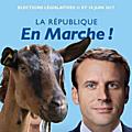 Je vous le dis, une chèvre, pas trop mal recoiffée, peut devenir dimanche 18 juin députée du peuple français !