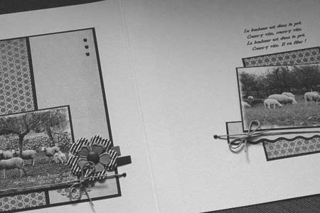 Annexe_B___Ins_rer_des_pages_dans_un_album_5