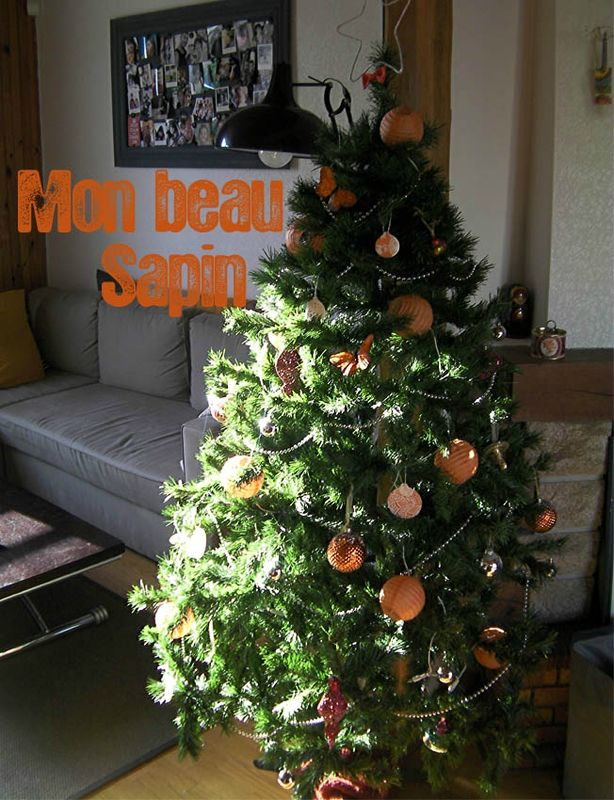 Sapin Nol 2_modifi-1