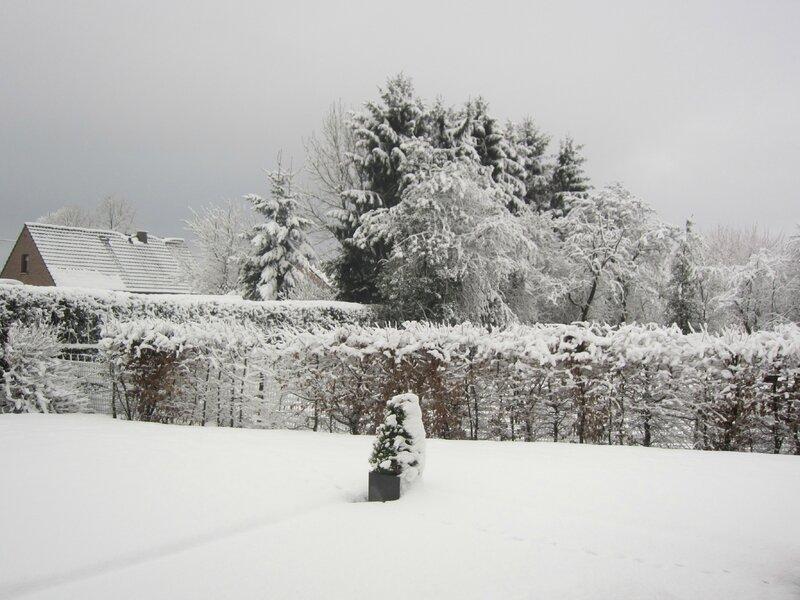 neige 009