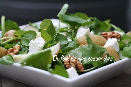 salade_cresson