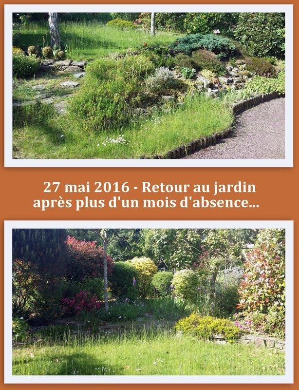 16 05 27 Le jardin au retour de cure 18h05