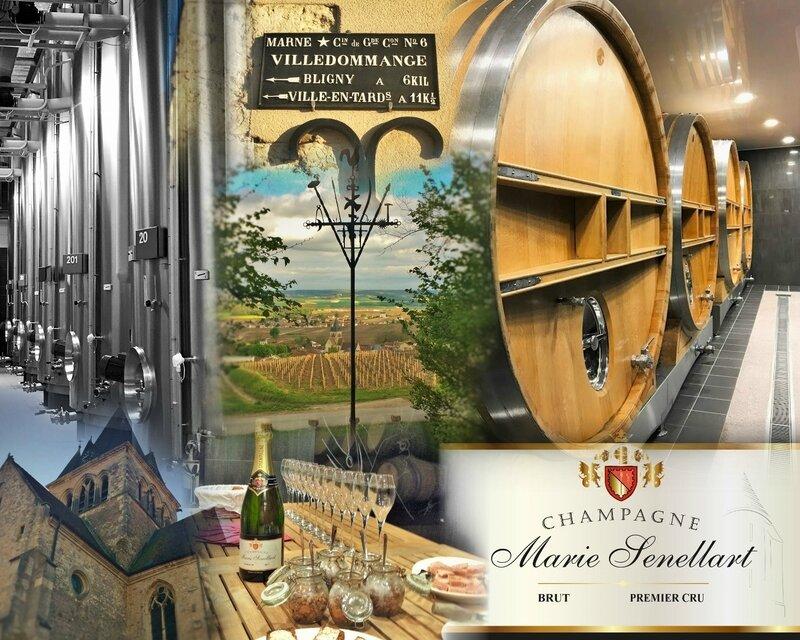 De la vigne au Champagne Marie Senellart
