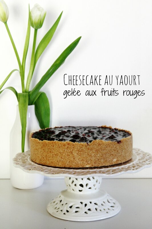 cheesecake sans cuisson (2)