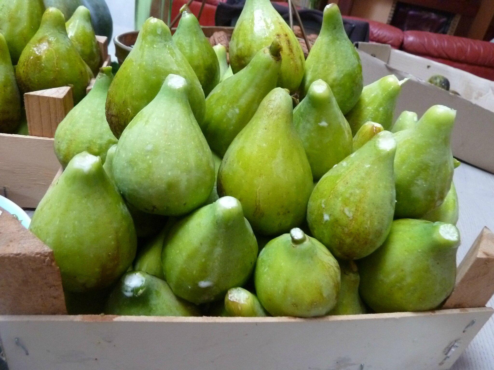 30 septembre les figues il faut les sauver passion potager - Quand cueillir les figues ...