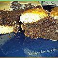 Marbré chocolat hyper moelleux