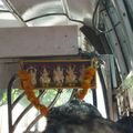detail bus (Large)
