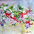Fleurs de prunier, aquarelle 30 x 40.