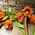 Les ateliers d'art floral a partir du mois de
