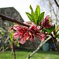 Quand le printemps est là, tout va !
