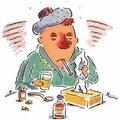 La grippe ? pas pour moi !!!