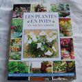 Les plantes en pot en toutes saisons
