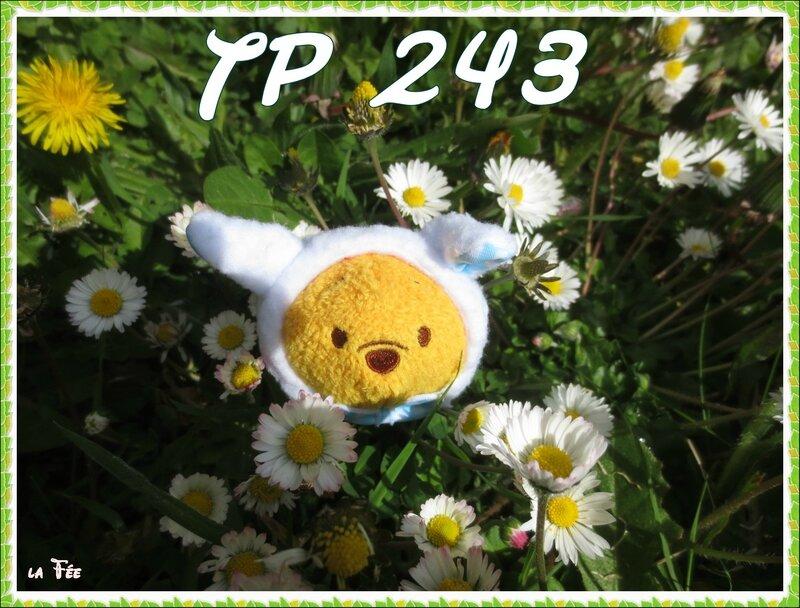 Tp 243