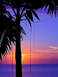 purple_sunset