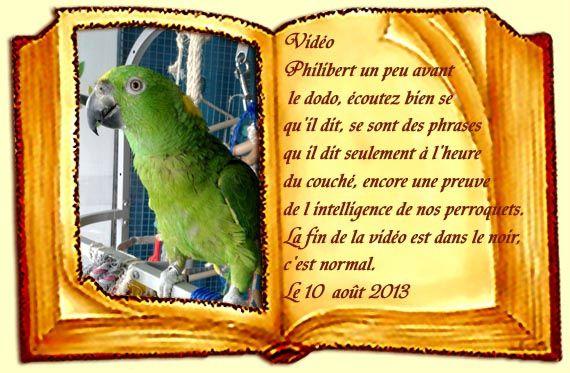 avant le dodo