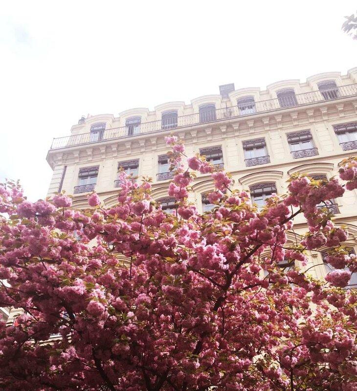 6-boutique-lindt-lyon-ma-rue-bric-a-brac