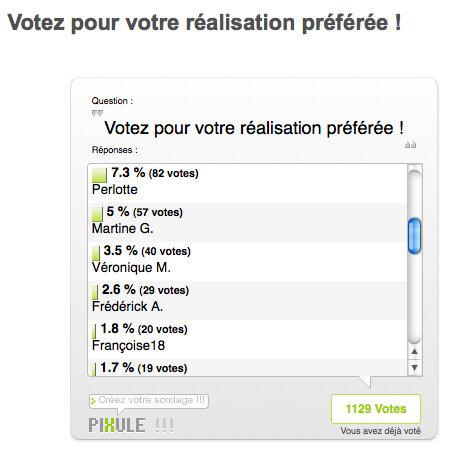 Capture_d__cran_votes_2