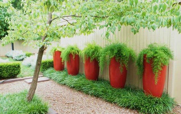 jardin-moderne-dynamique