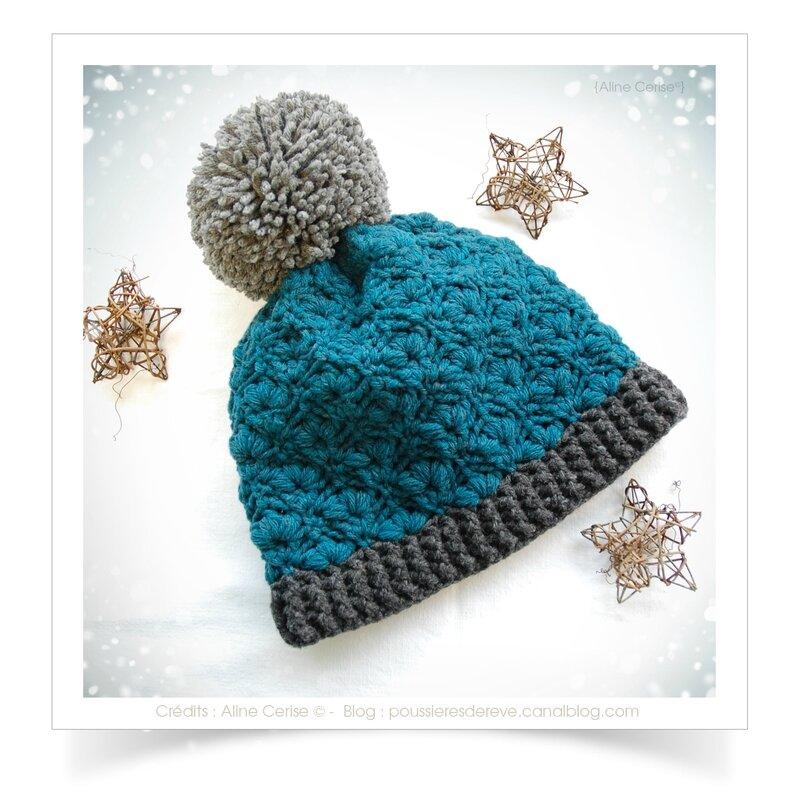 Bonnet-bleu-canard2