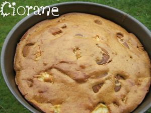 gateau-pomme-speculoos