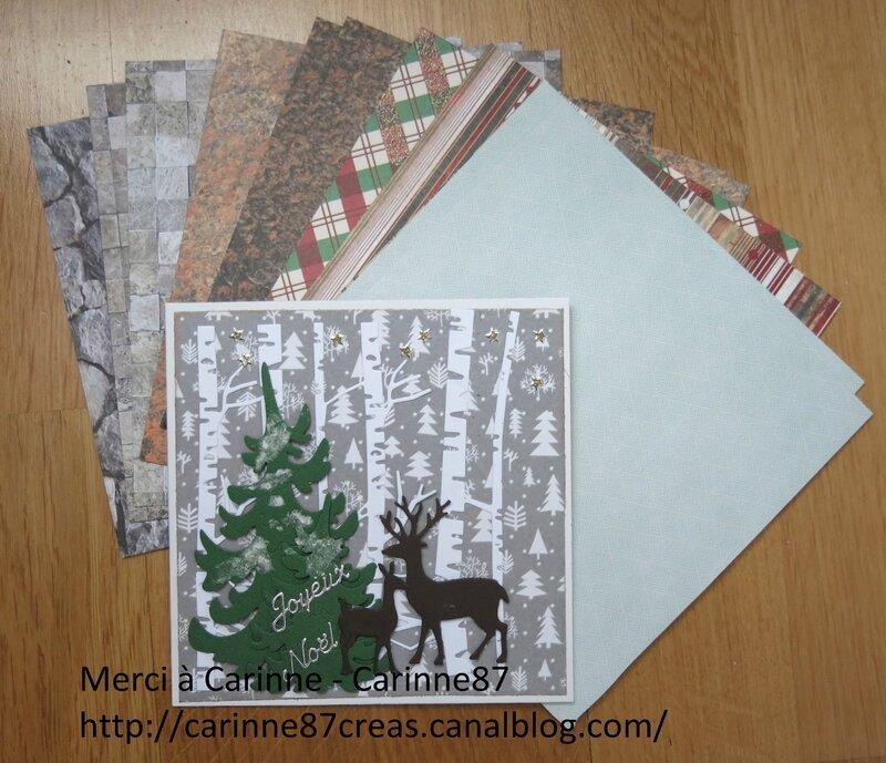 Envoi de Carinne - carinne 87 - Janvier 2018 - 01 b
