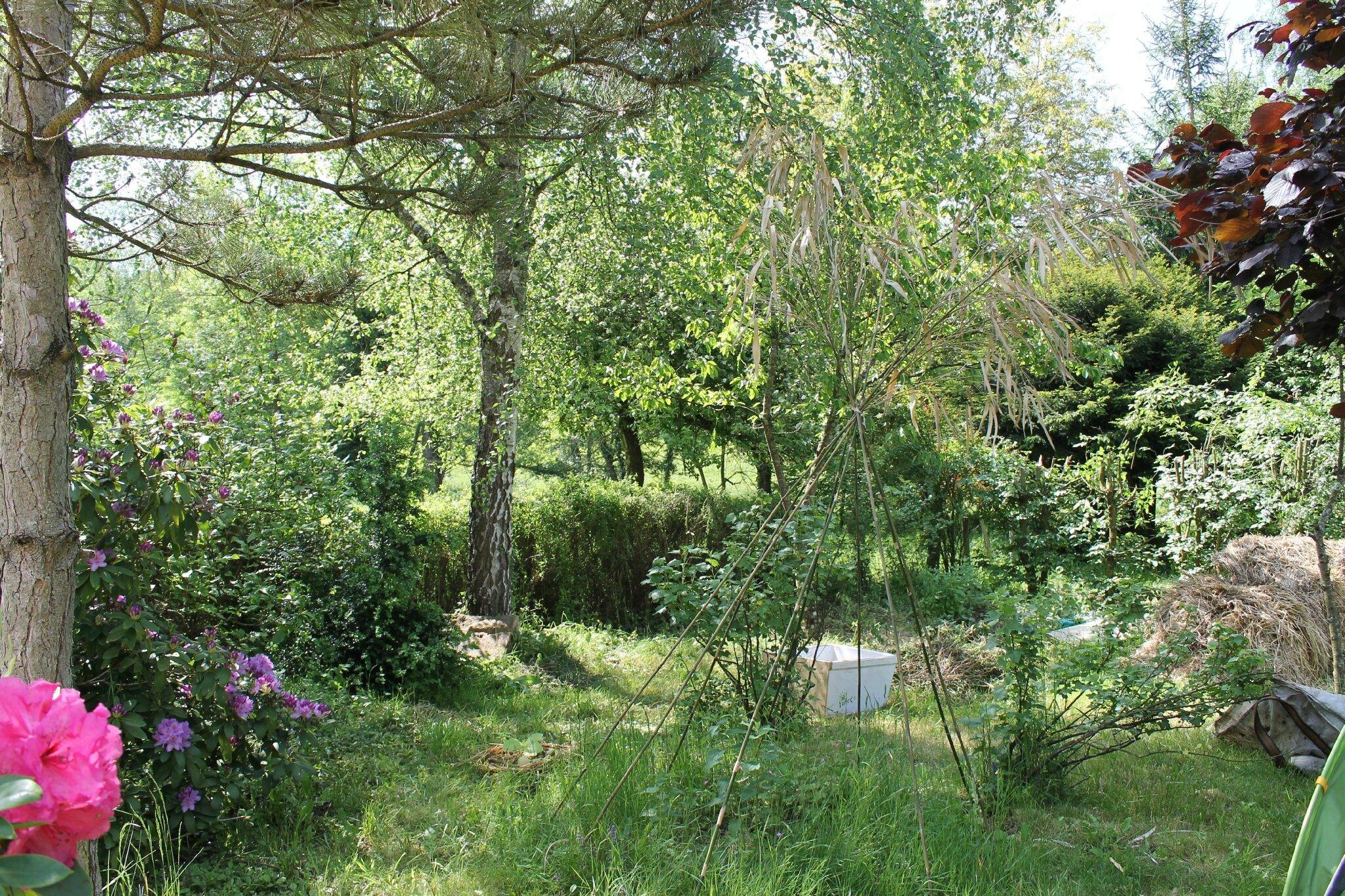 Le jardin en tentative de permaculture les pierre feu 6 for Jardin en permaculture