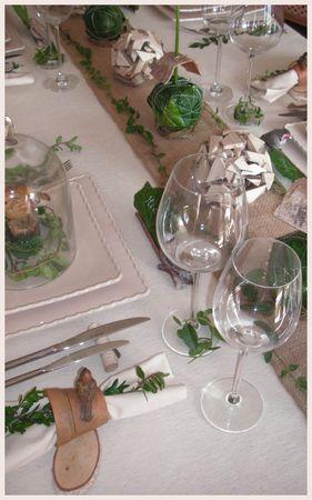 2009_09_24_table_bouleau_blanc_vert6