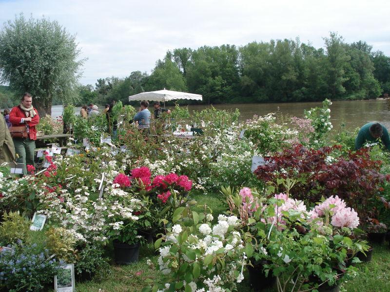 Apremont sur allier f te des plantes suite et fin for Apremont sur allier jardin