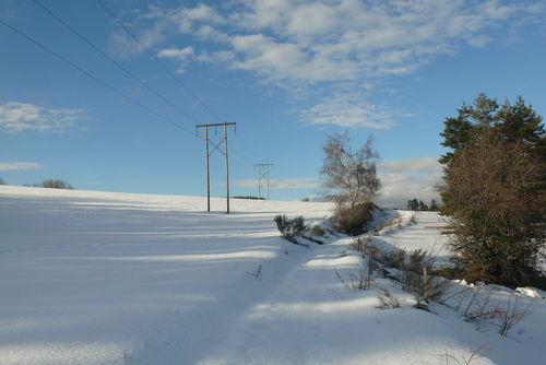 2008 12 30 Sur le chemin enneigé au Jas