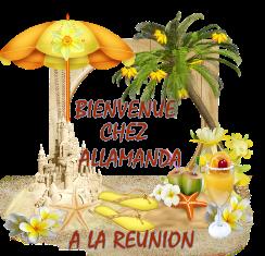 BIENVENUE CHEZ ALLAMANDA