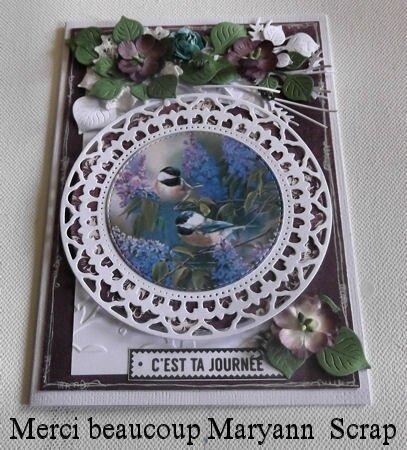 13 DSCF1165 RECUS DE MARYANN SCRAP