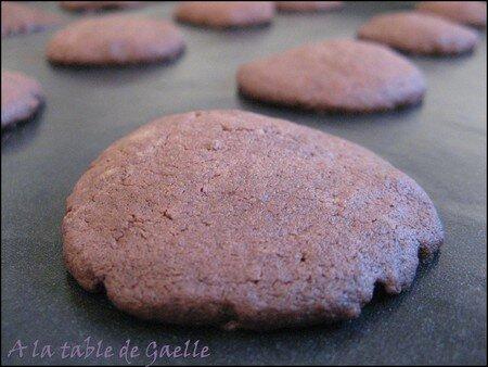 biscuits_choco_seul
