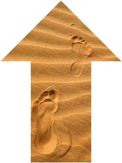Les pieds plats rebelles