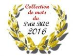 collection de mots 2016