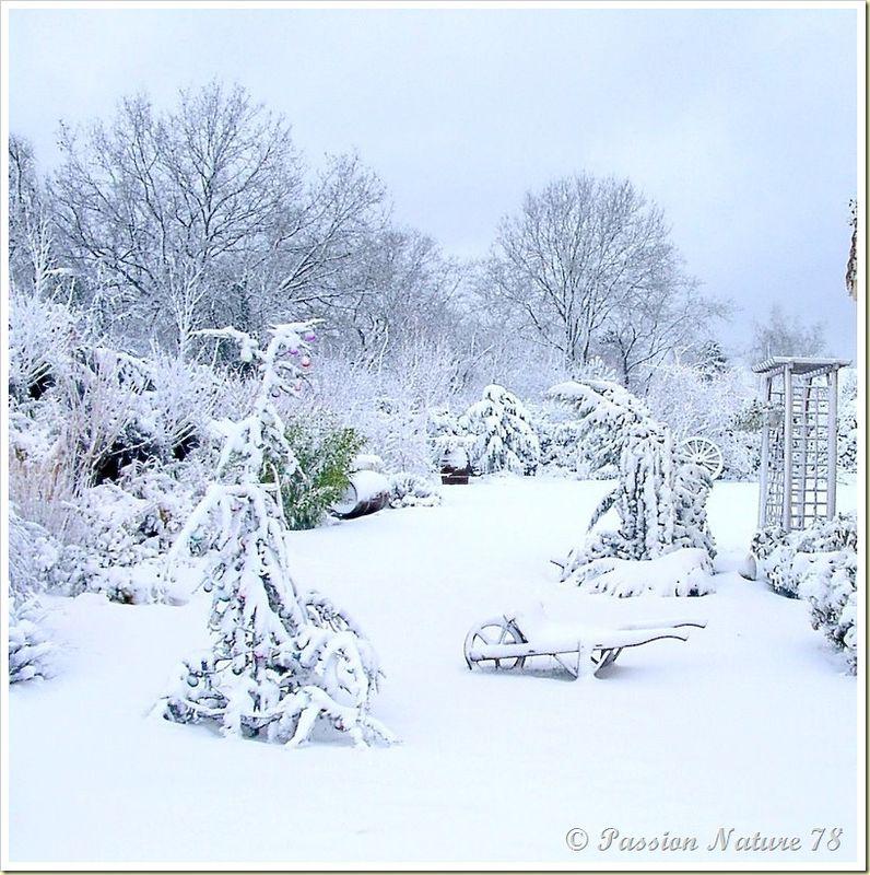 Notre jardin en hiver (18)