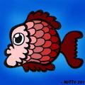 431. le poisson du jour.