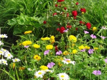 rendez_vous_au_jardin_2_010