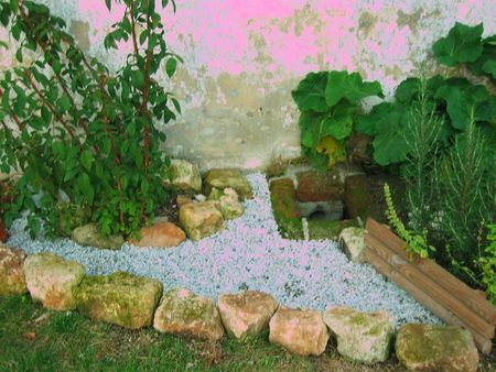 mon jardin 017