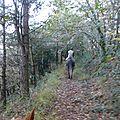 balade liberté - Mesnil Ozenne à cheval (49)