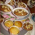 muffincitron2