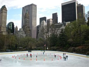 Central Park patinoire