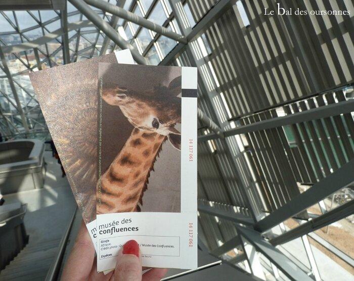 69 Musée d'Histoire Naturelle La Confluence Lyon 2