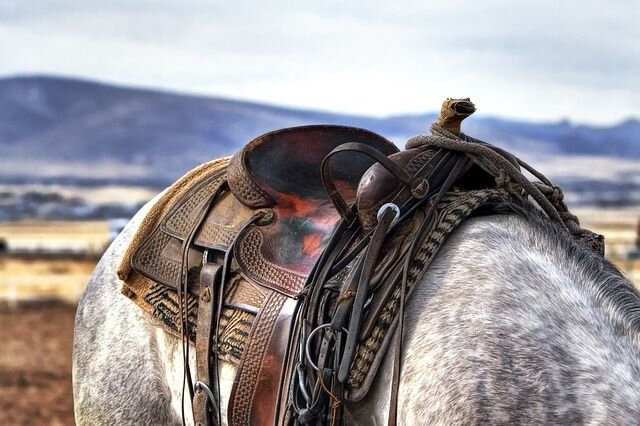 Cheval western